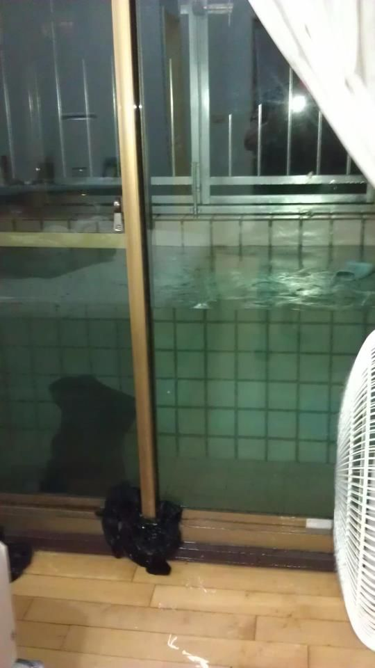 http://livedoor.3.blogimg.jp/ko_jo/imgs/6/f/6fa7f301.jpg
